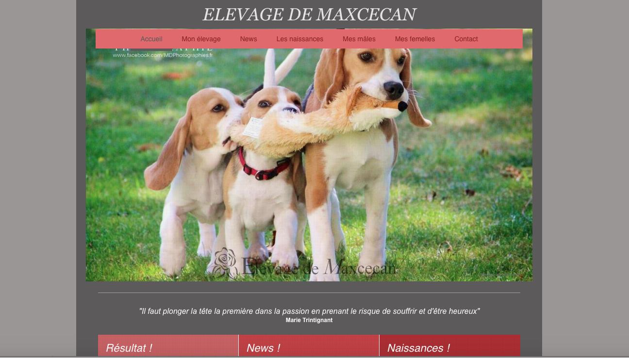 Elevagedemaxcecan.com