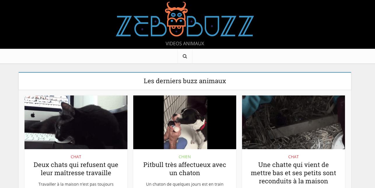 Vidéos d'animaux Zebubuzz.com