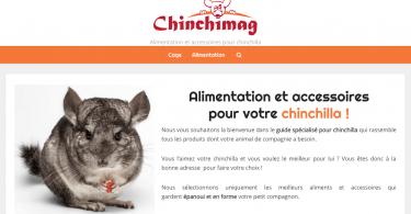 Chinchimag.com