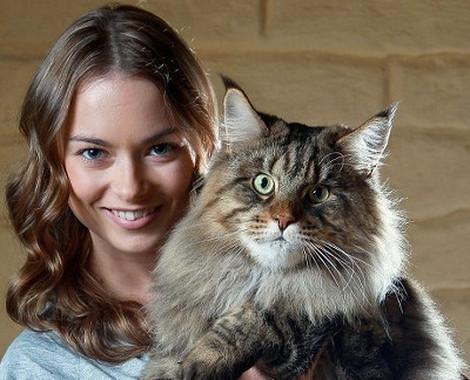 f28dd9051a67d7 Annuaire animaux   référencement des professionnels et blogs animaliers.