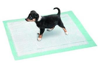 tapis de propret pour chien comment faire en sorte qu 39 il l 39 utilise. Black Bedroom Furniture Sets. Home Design Ideas