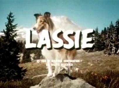 lassie série tv